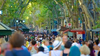 Las Ramblas showing street scenes and a city as well as a large group of people