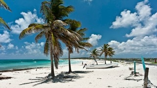 Cozumel Pictures: View Photos & Images of Cozumel