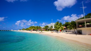 Doctor's Cave Beach featuring tropical scenes, a beach and a coastal town