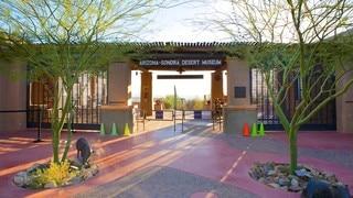 Arizona-Sonora Desert Museum featuring desert views and signage
