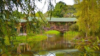 Bogota Botanical Garden which includes a pond, a park and a bridge