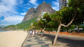 Sao Conrado Beach featuring a beach