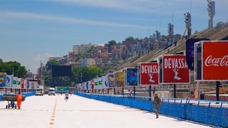 Anhembi Sambadrome featuring signage