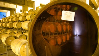 Navarro Correas Winery