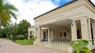 South Florida Museum (musée historique)