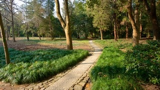 สวนพฤกษชาติหางโจว