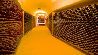 L.A. Cetto Wine Cellar showing interior views