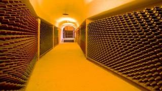 L.A. Cetto Wine Cellar