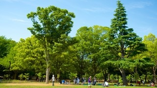 Công viên Yoyogi