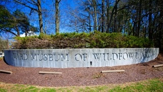 Ward Museum of Wildfowl Art which includes signage