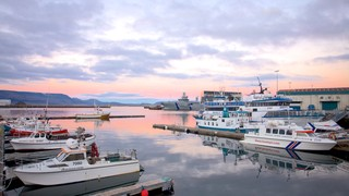 Reykjavik Harbour showing boating, general coastal views and a sunset