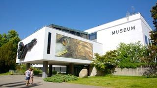 Geneva Museum of Natural History
