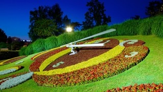 Flower Clock featuring flowers, night scenes and outdoor art
