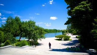 Delaware Park showing a park