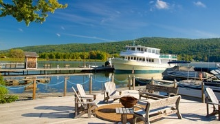 Keuka Lake State Park featuring boating, general coastal views and a bridge