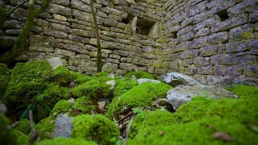 Ruines Dvigrad