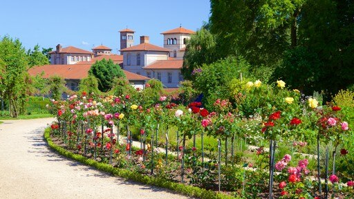 Thabor Botanic Gardens