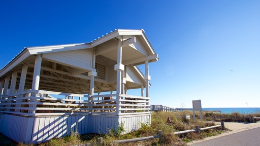 Henderson Beach State Park which includes general coastal views