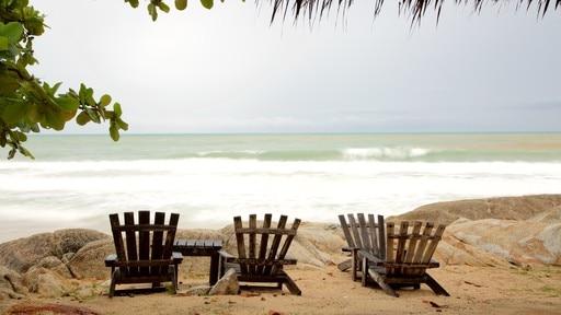 Playa La Plata (spiaggia)