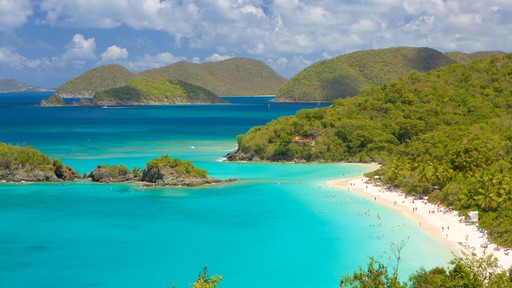 Trunk Bay which includes island views