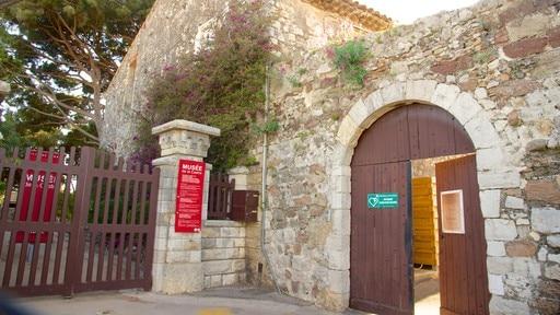 Castre Museum