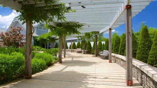 North Carolina Arboretum (jardin botanique)