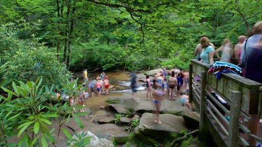 Sliding Rock featuring a river or creek and forests as well as a large group of people