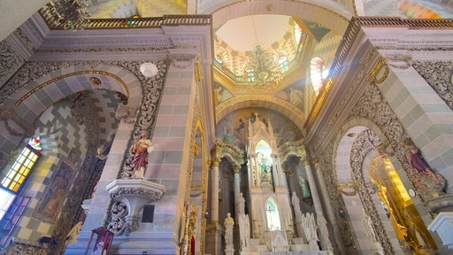 Immaculate Conception Cathedral featuring interior views, a church or cathedral and heritage architecture