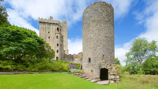 Blarney Castle which includes heritage elements, heritage architecture and chateau or palace