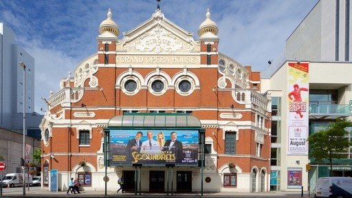Grand Opera House which includes heritage architecture, a city and heritage elements