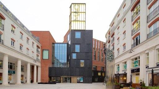 Metropolitan Arts Centre