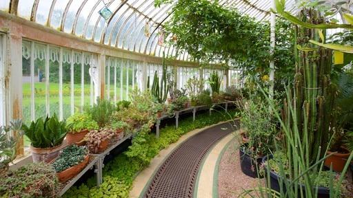 벨파스트 식물원