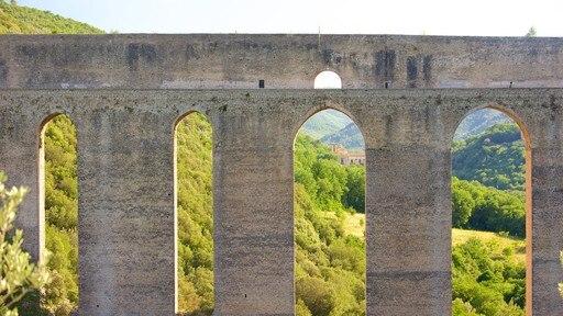 Ponte delle Torre