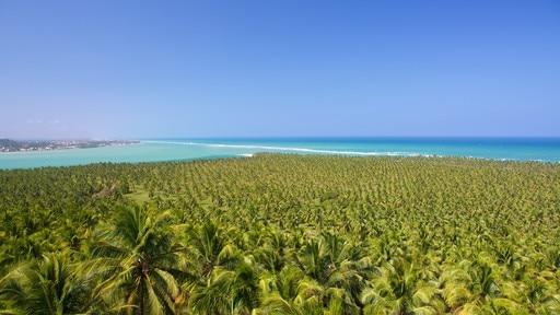 Gunga Beach