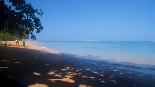 Anini Beach which includes a sandy beach