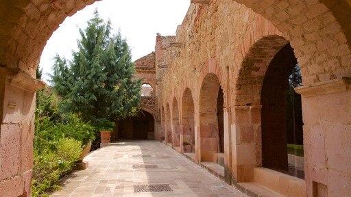 Rafael Coronel Museum