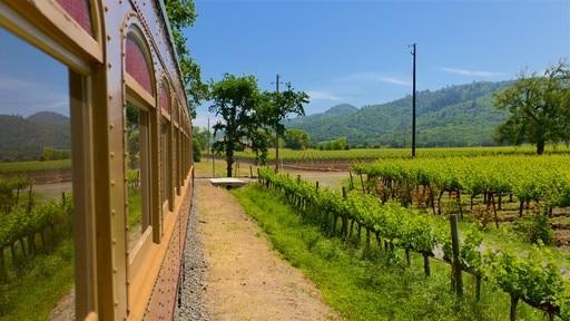 Napa Valley Wine Train (train touristique)