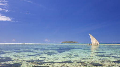Isla Mnemba