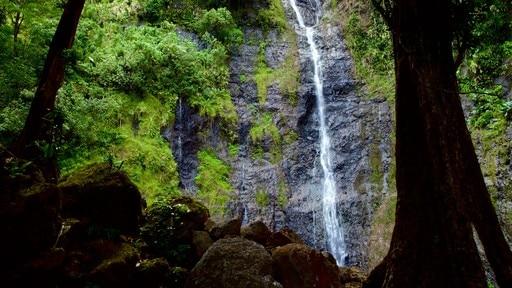 Cascades de Faarumai
