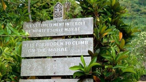 Marae Arahurahu Temple