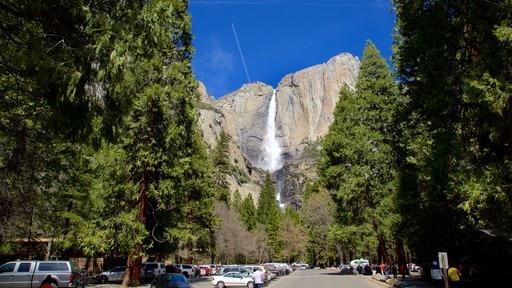 Yosemite Lodge Amphitheater