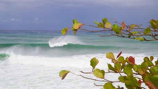 푼타 하이구에라 등대