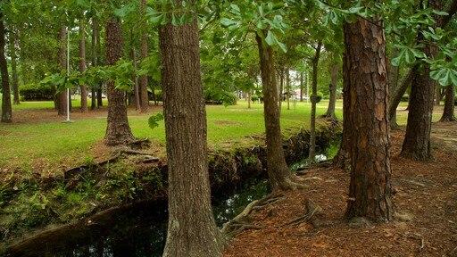 Fulwood Park