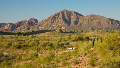 Camelback Mountain showing mountains and landscape views