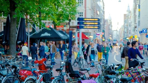 Leidseplein featuring a city, cycling and street scenes