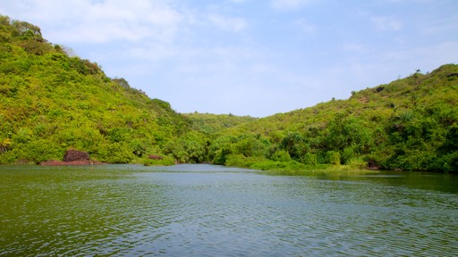Arambol Sweet Water Lake