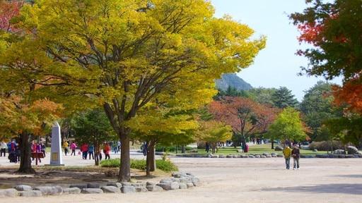 Seorak-san National Park
