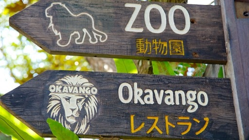 발리 동물원