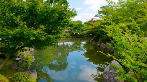 Toji Temple featuring a garden, religious aspects and a pond