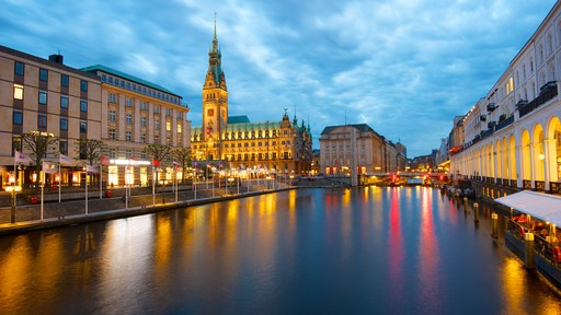 Hamburg City Hall showing night scenes, an administrative buidling and heritage architecture